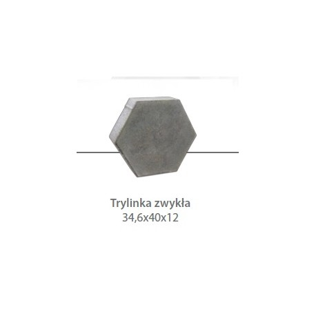 Płyta drogowa trylinka zwykła gr. 12 cm